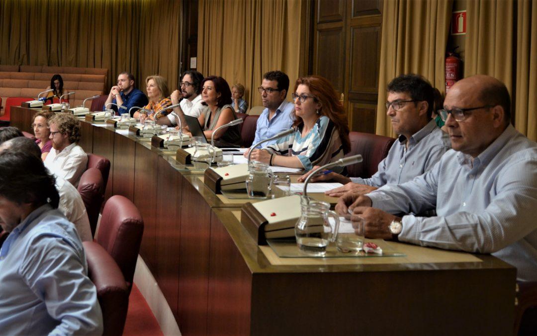 APROBADAS LAS MOCIONES SOCIALISTAS PARA PONER EN MARCHA EL PROGRAMA MUJER Y DEPORTE Y QUE ALBACETE SE SUME AL AÑO EUROPEO DEL PATRIMONIO CULTURAL